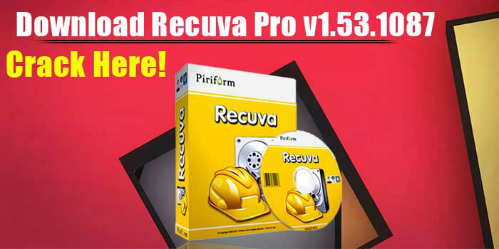 recuva professional serial number